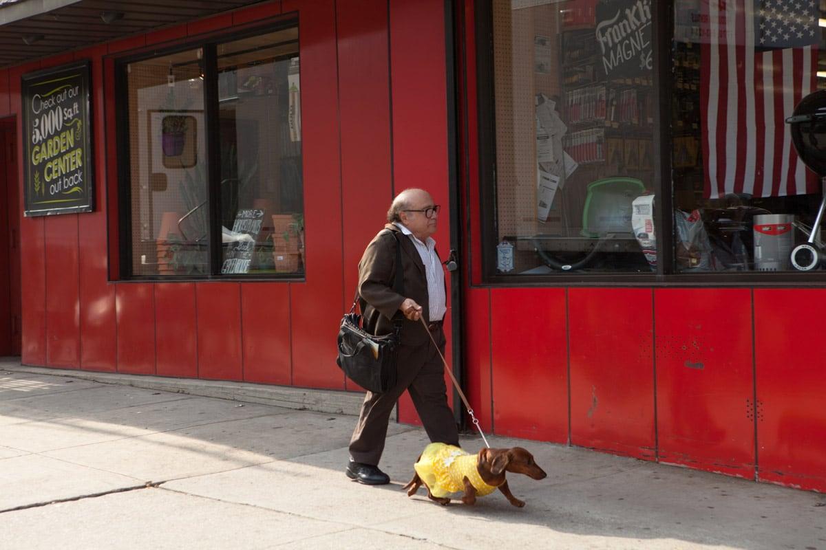 Danny DeVito i Wiener dog (Todd Solondz, 2016)