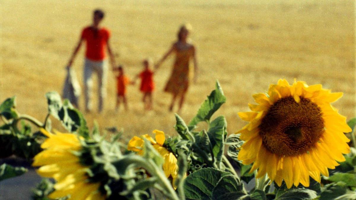 Min lycka (1965)