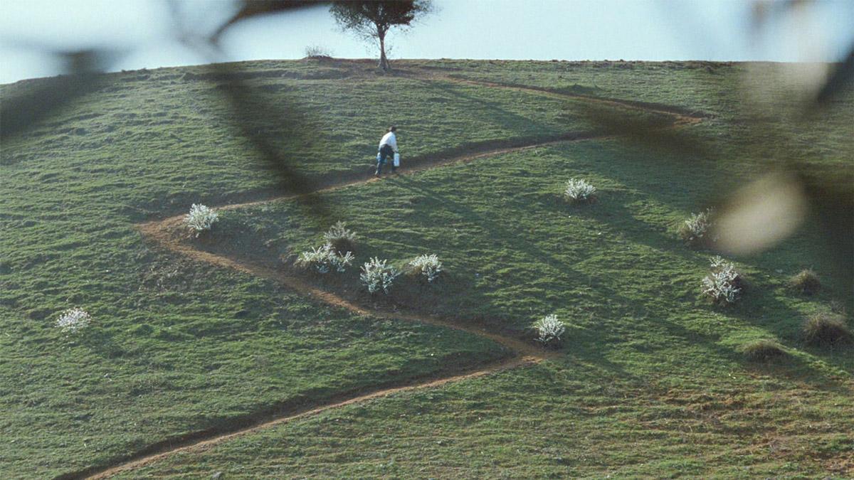 Under olivträden (Abbas Kiarostami, 1994)